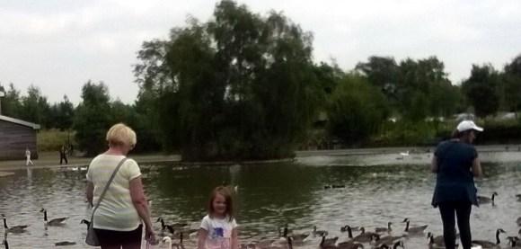 duck lady